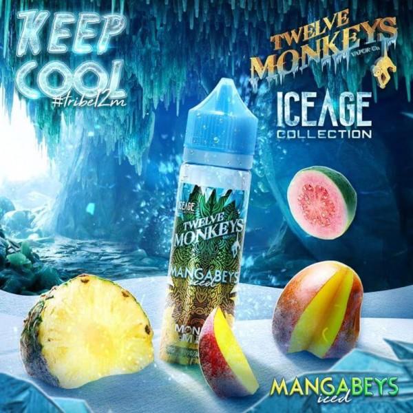 IceAge Mangabeys Iced Liquid von 12Monkeys ♥ Shortfill ✔ Mango, Ananas, Guave, Frische ✔ Schneller Versand ✔ Auch in unseren Shops ✔ Ab 50€ versandkostenfrei ✔
