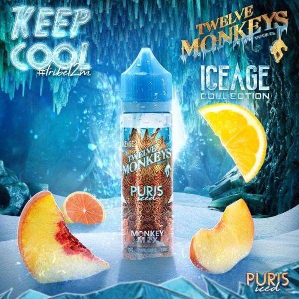 IceAge Puris Iced Liquid von 12Monkeys ♥ Shortfill ✔ Zitrusfrüchte, Pfirsich, Frische ✔ Schneller Versand ✔ Auch in unseren Shops ✔ Ab 50€ versandkostenfrei ✔